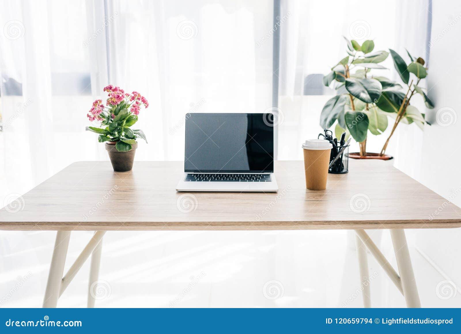 Frontowy widok laptop z pustym ekranem, filiżanką, kwiatami i materiały,