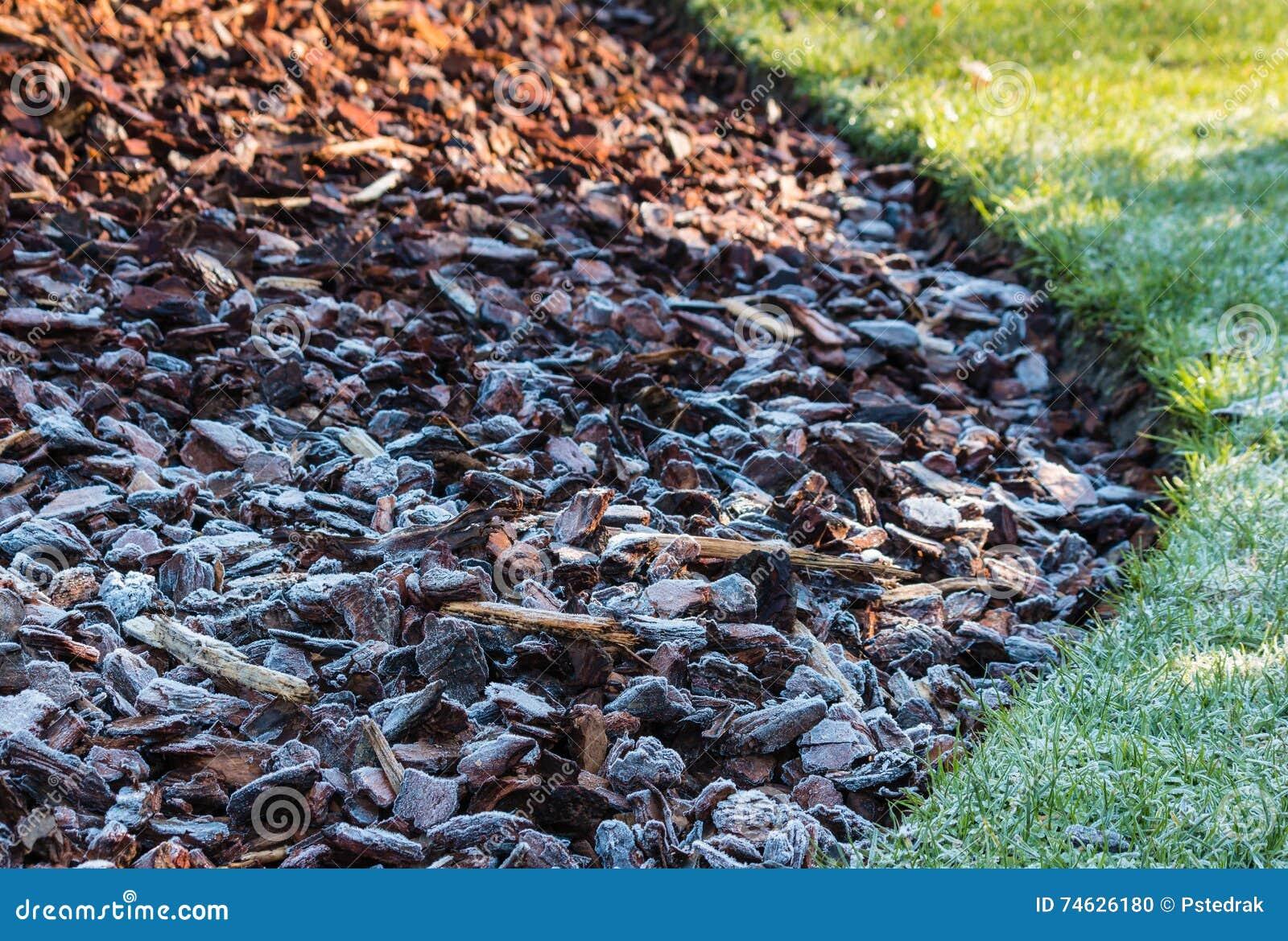 Frost Bedeckte Holzspäne Im Garten Stockfoto Bild Von Laubdecke