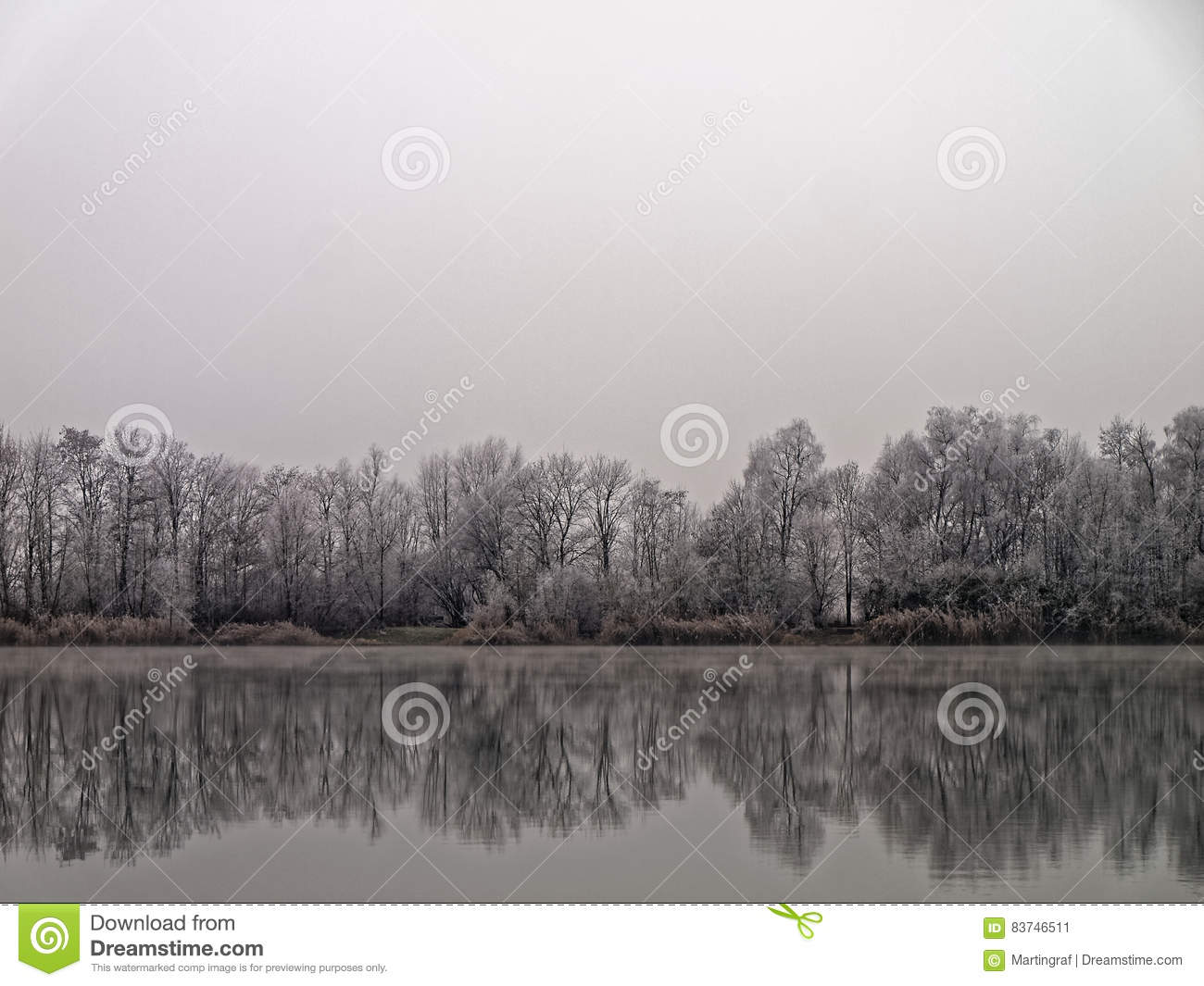 Frosted lake landscape mirrored in water