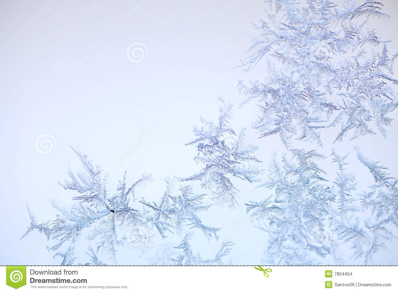 Frostmuster