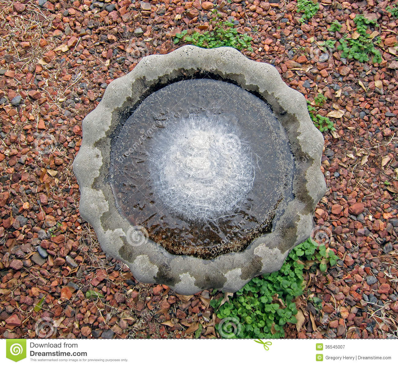 Frozen birdbath stock image image of bowl frigid cold for Concrete freezing