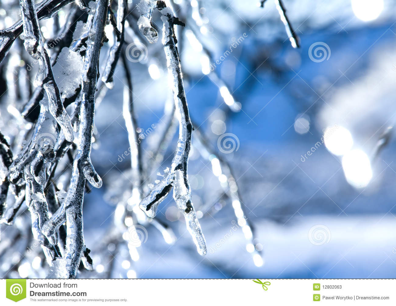 Frozen Branch - Ice Stock Photos - Image: 12802063