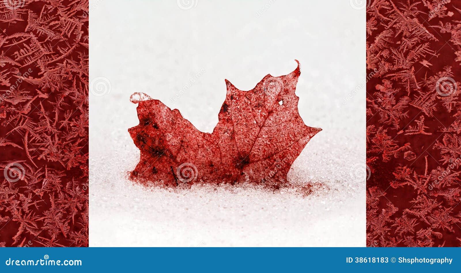 frozen canada flag concept stock photos image 38618183