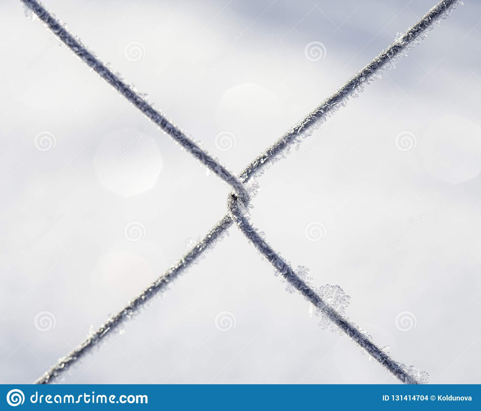 Frozen fence made of metal mesh covered with frost crystals, an early sunny cold morning, on a blurred background.