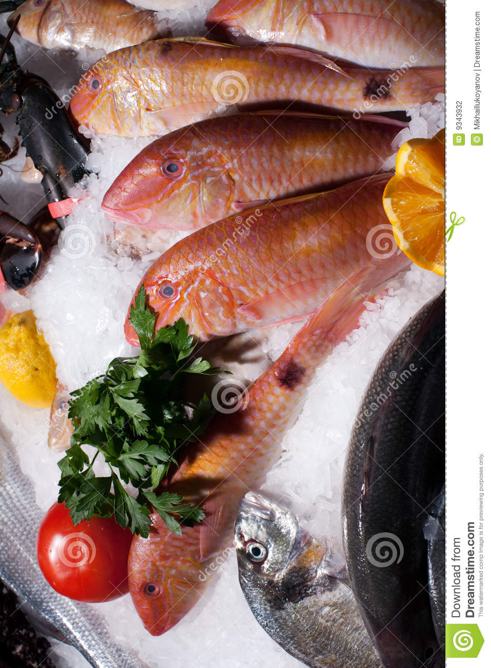 Frozen fish stock photography image 9343932 for Best frozen fish