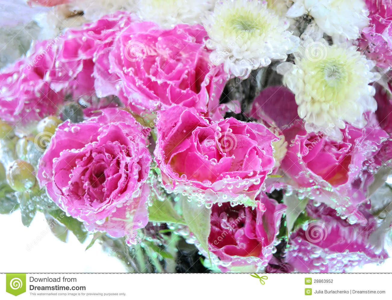 Frozen flowers background stock photo Image of nature