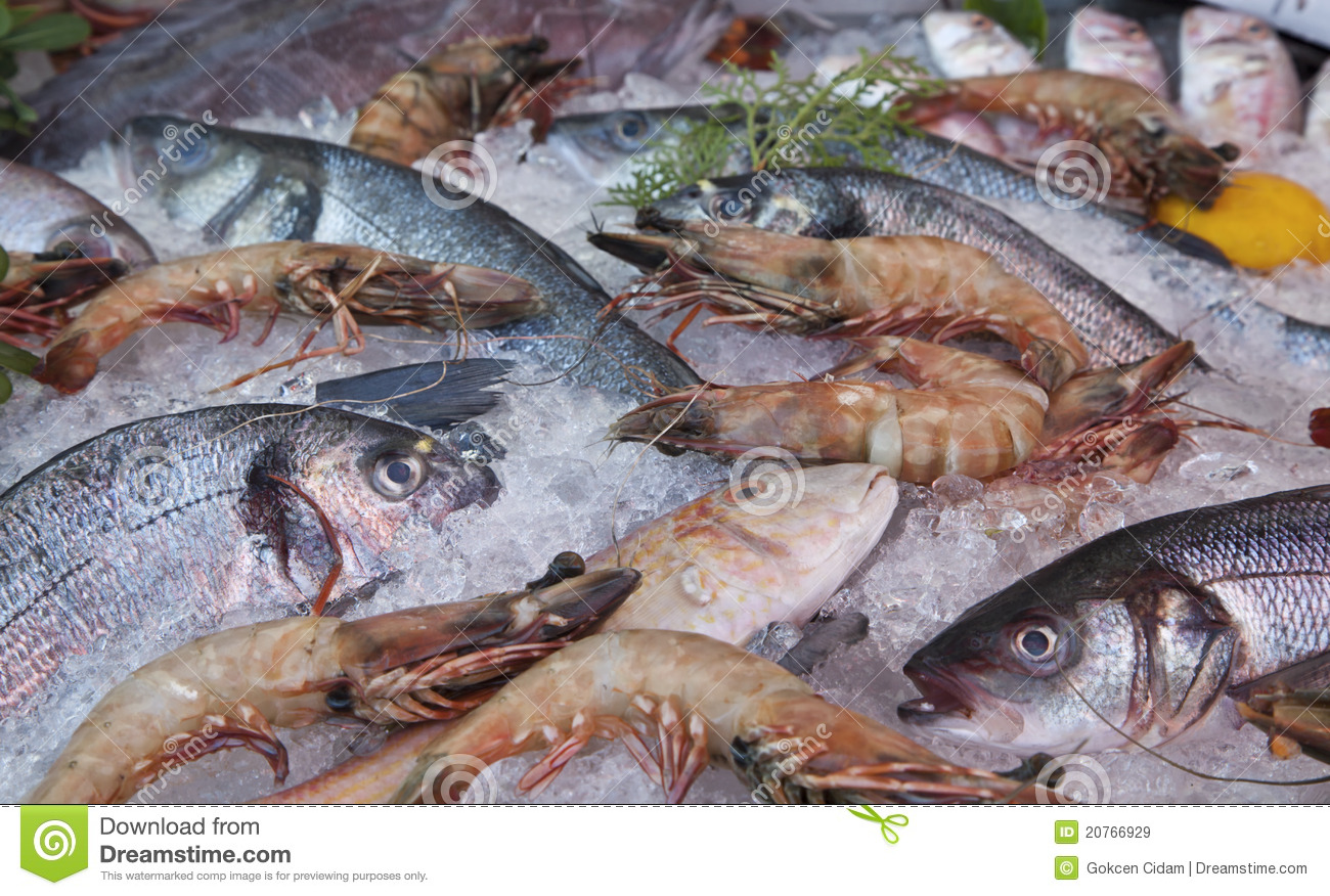 Frozen fresh fish and shrimp royalty free stock images for Fish and seafood
