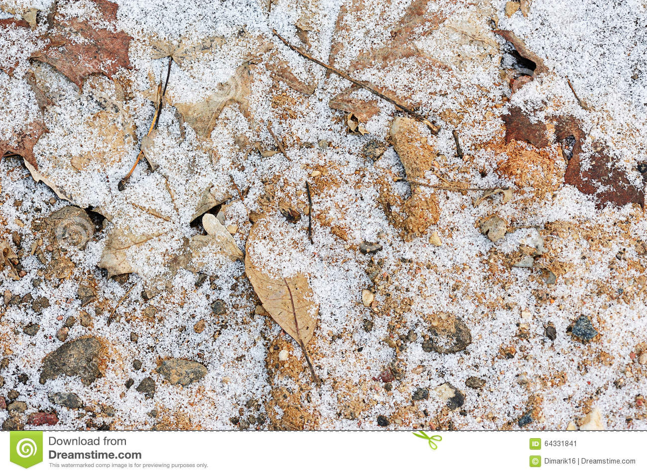 Download Frozen ground with snow stock image. Image of park, natural - 64331841