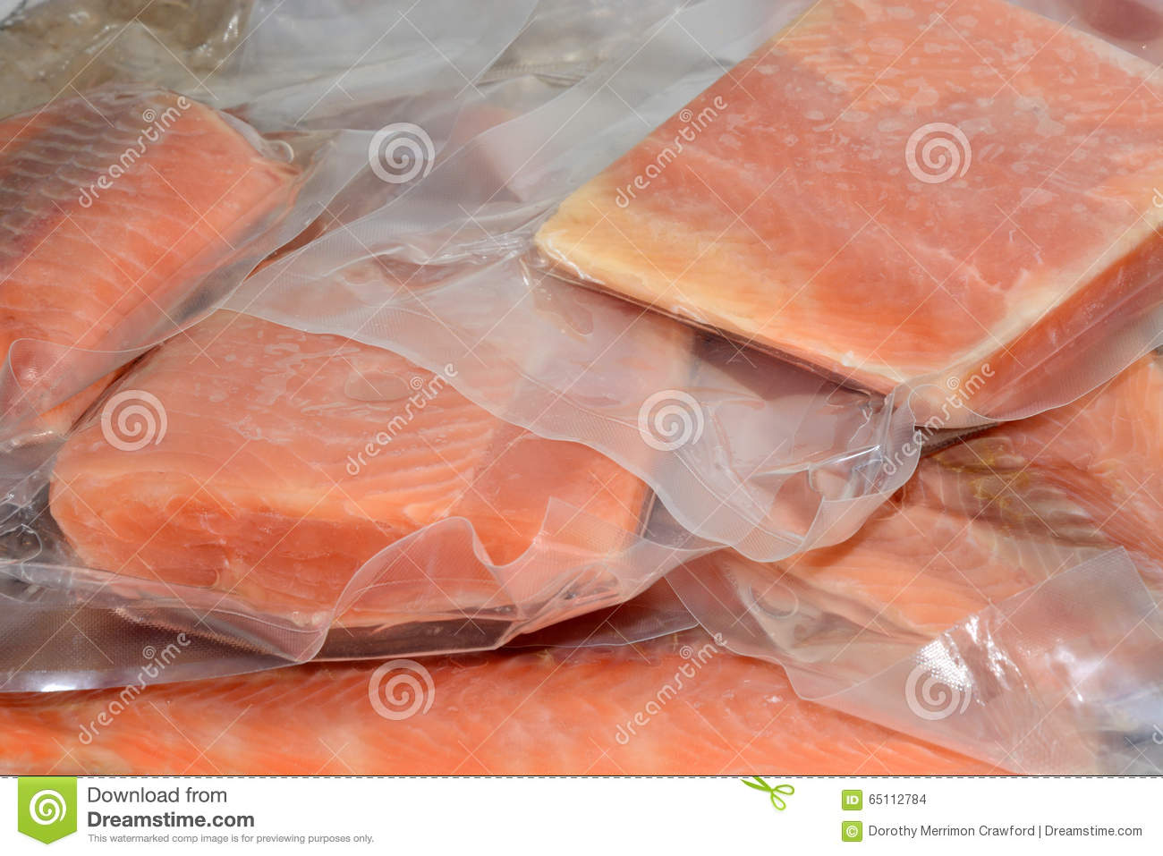 frozen salmon fillets stock photo image of uncooked 65112784. Black Bedroom Furniture Sets. Home Design Ideas