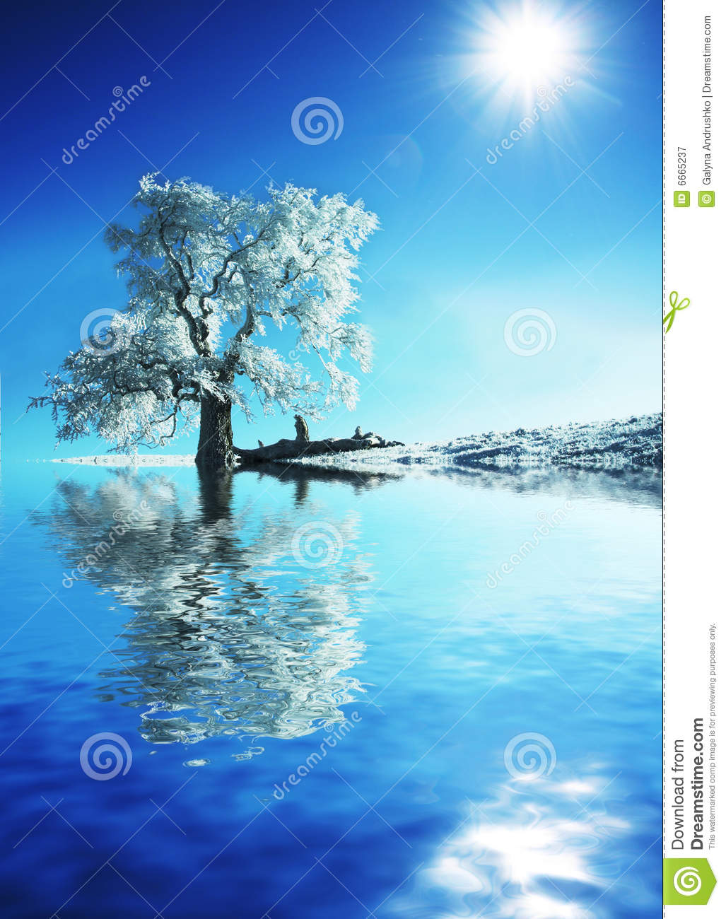 Frozen Tree Royalty Free Stock Photography - Image: 6665237