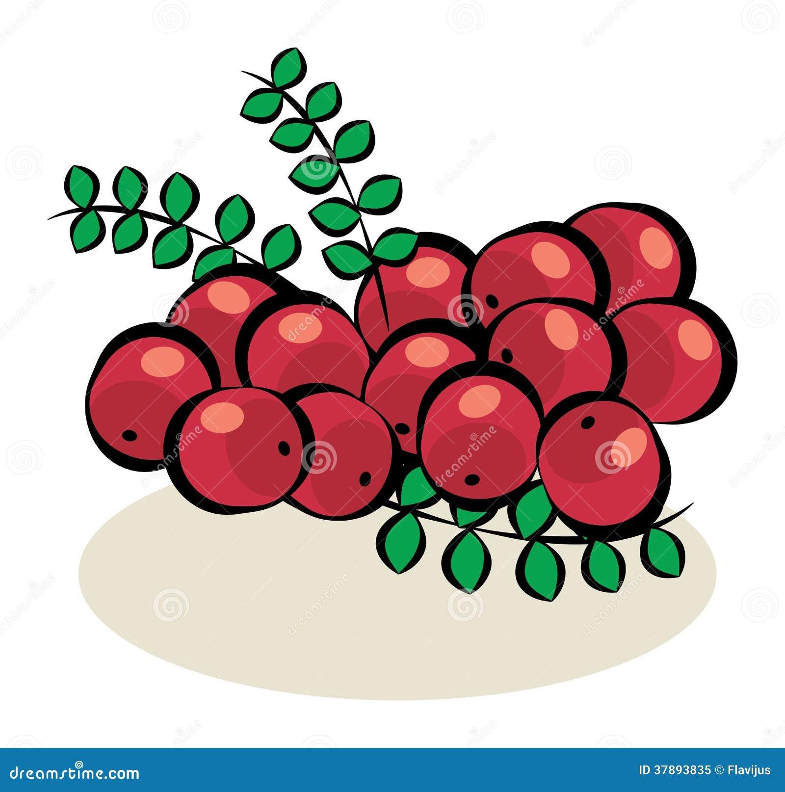 Fruit, Amerikaanse veenbessen