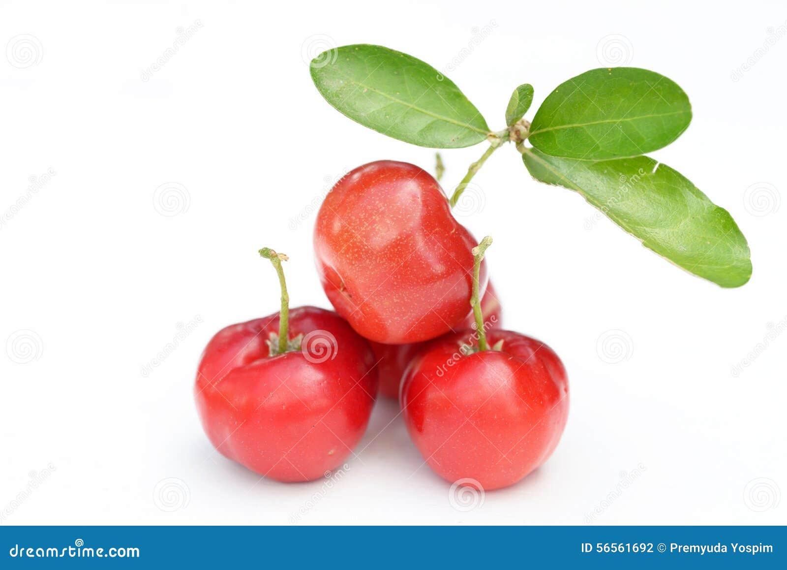 Fruit brésilien d Acerola