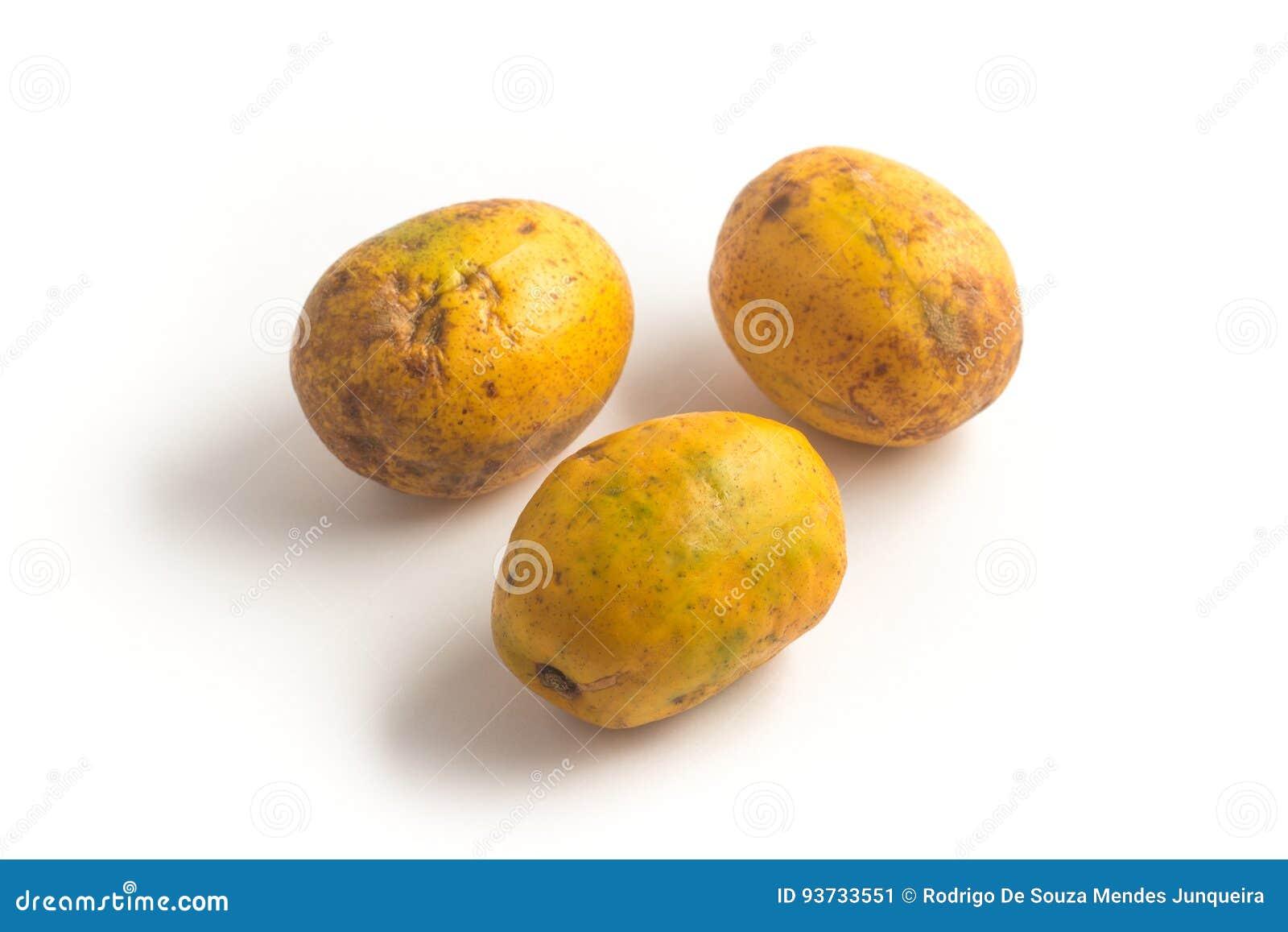 Fruit de Caja-Manga Dulcis de Spondias