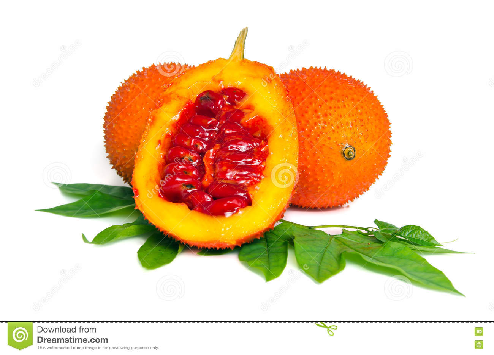 fruit de gac typique des aliments v g taux de couleur orange en asie avec l 39 ha photo stock. Black Bedroom Furniture Sets. Home Design Ideas