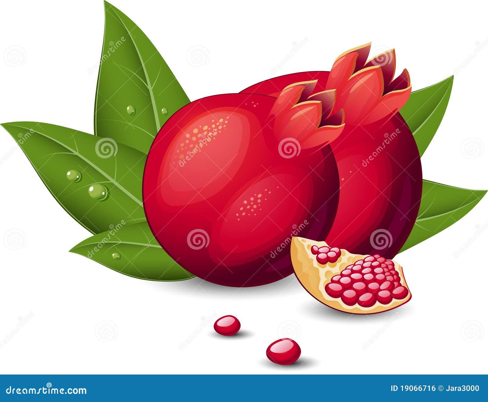 Fruit de grenade