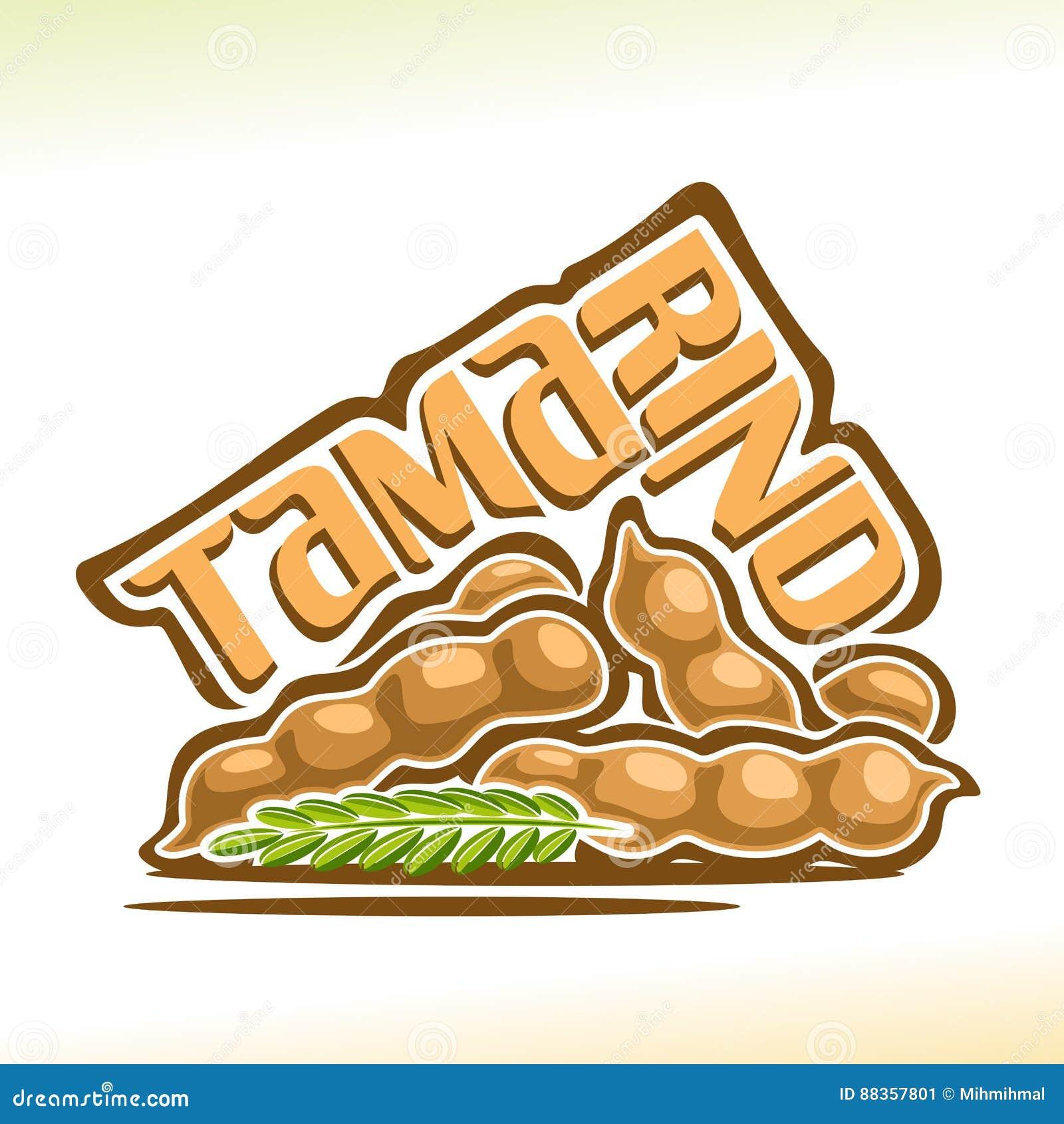 Fruit de tamarinier de logo de vecteur