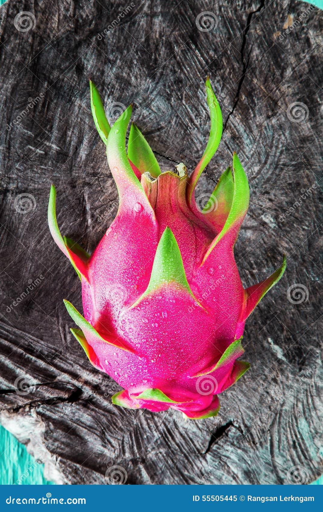 Fruit du dragon frais de l 39 arbre photo stock image 55505445 - Arbre fruit du dragon ...