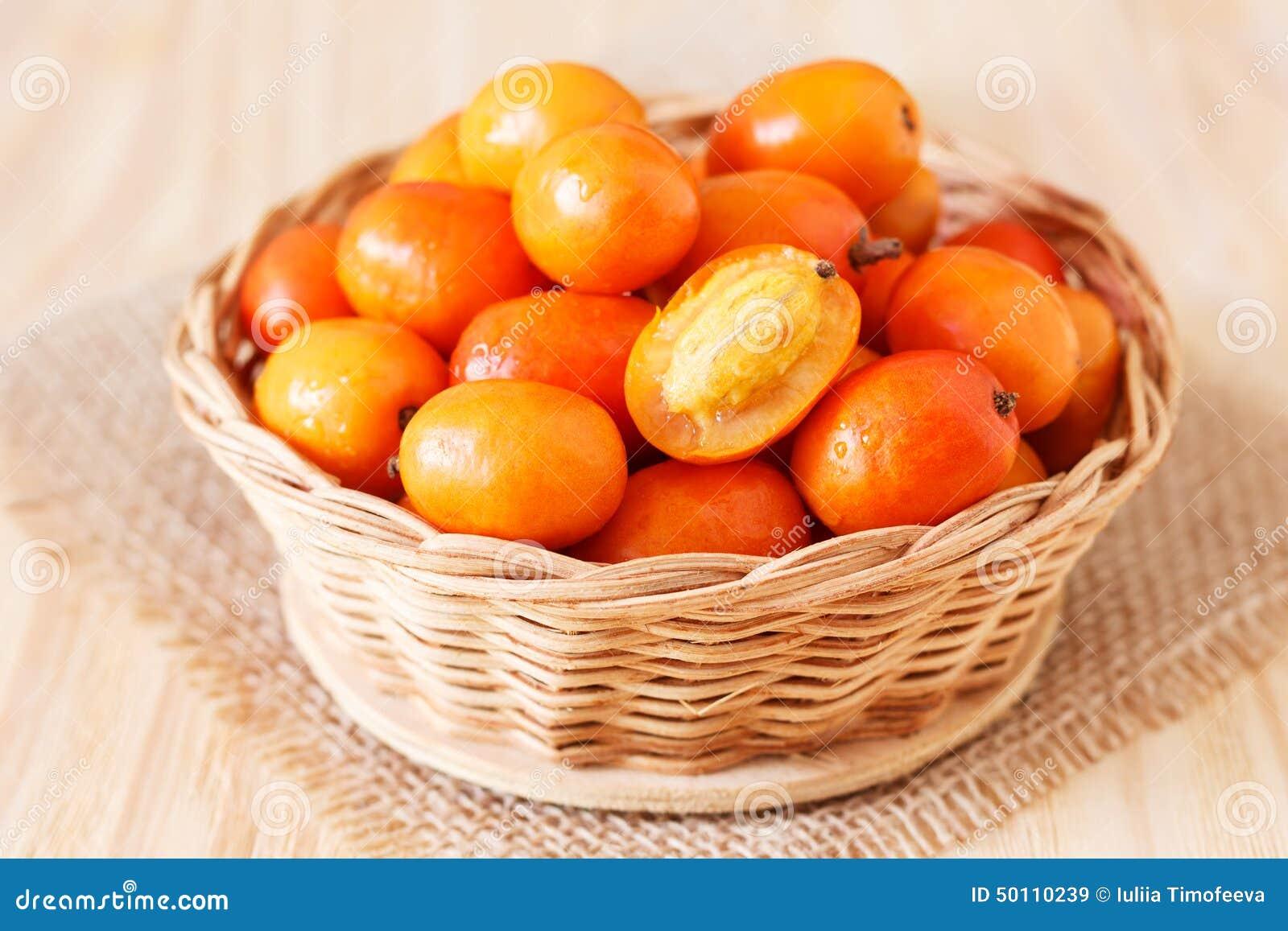 Fruit Jocote stock image  Image of cashew, mexico, region