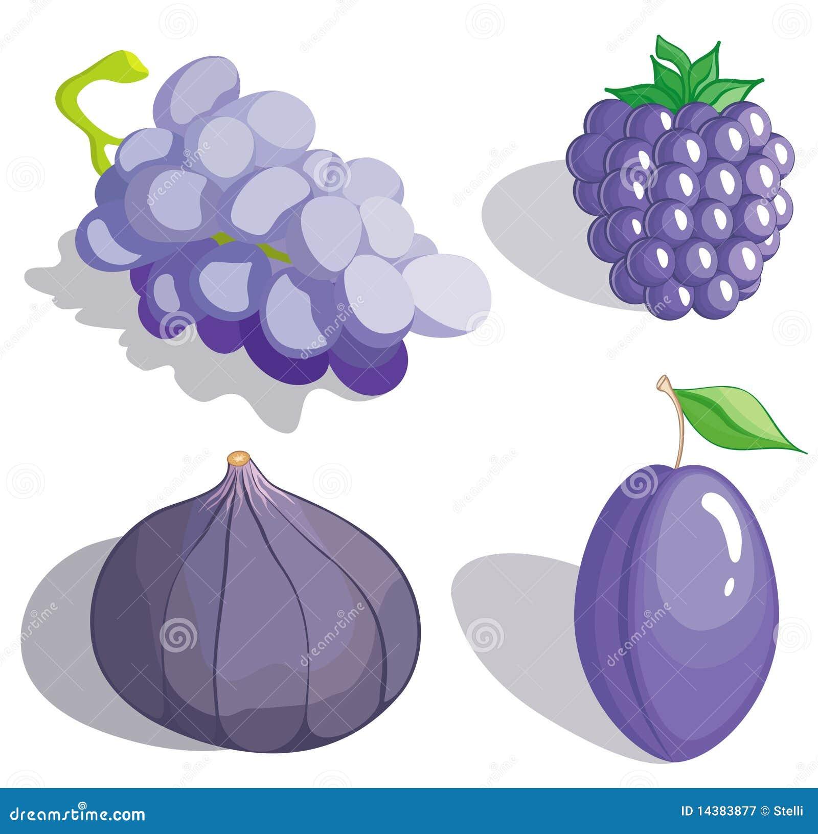 Fruit lilas photographie stock libre de droits image - Dessin de lilas ...