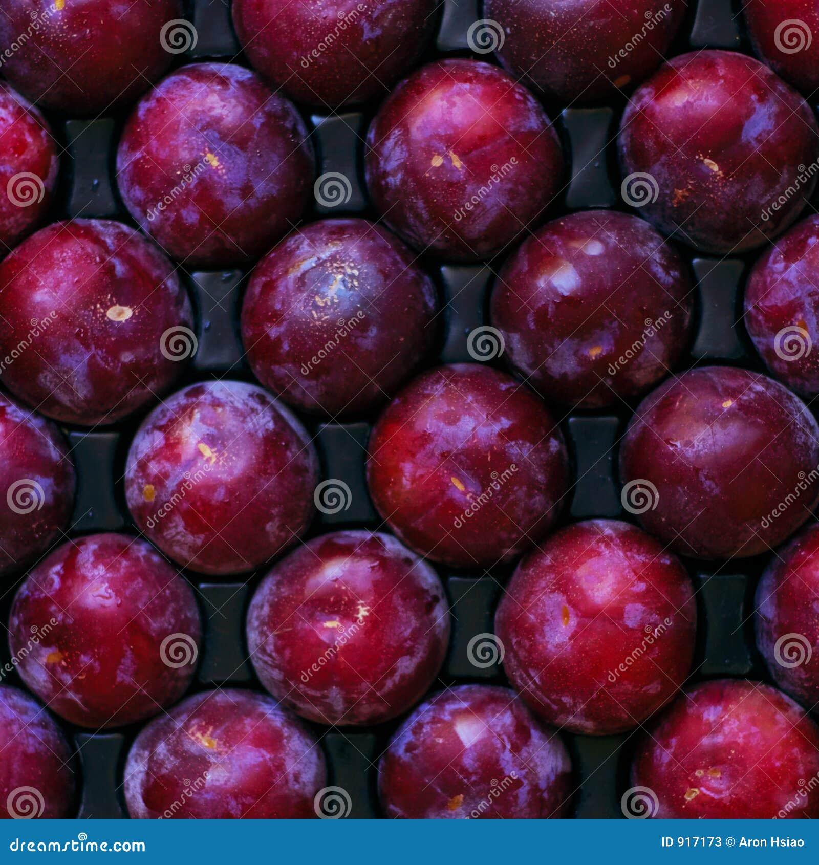 Fruit mûr et arbre-frais prêt pour l expédition ou consommation