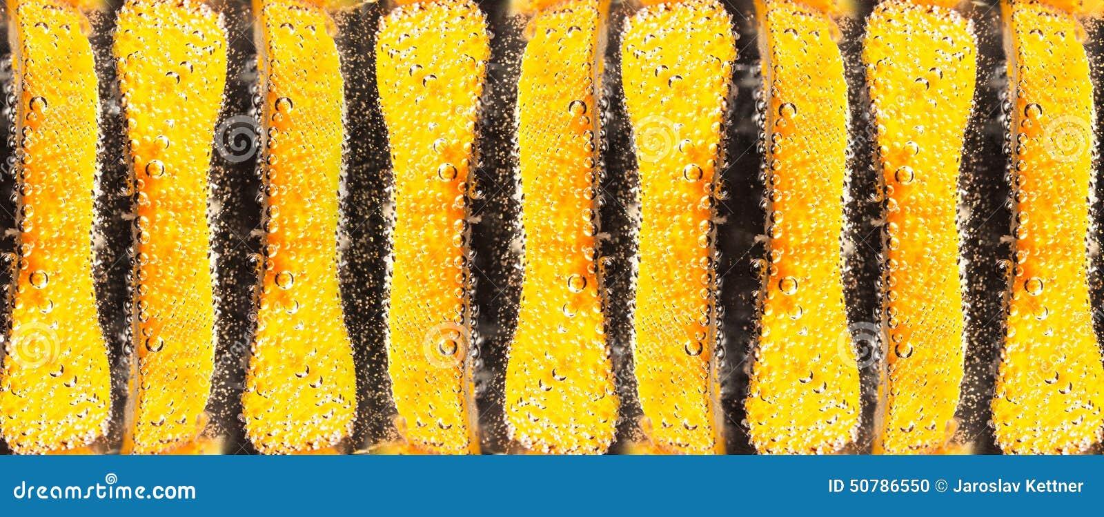 Fruit orange