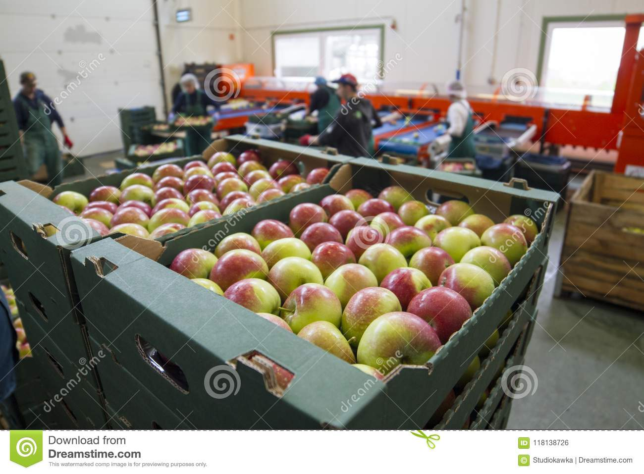 Fruit processing plant, Poland, Lubelskie, 08.2014