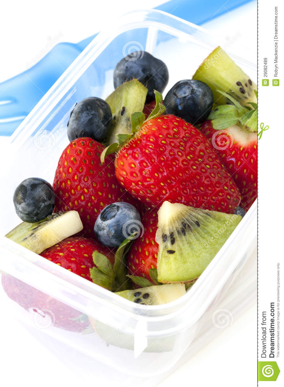 Fruit salad lunch box stock image image of school for Salas lunchs