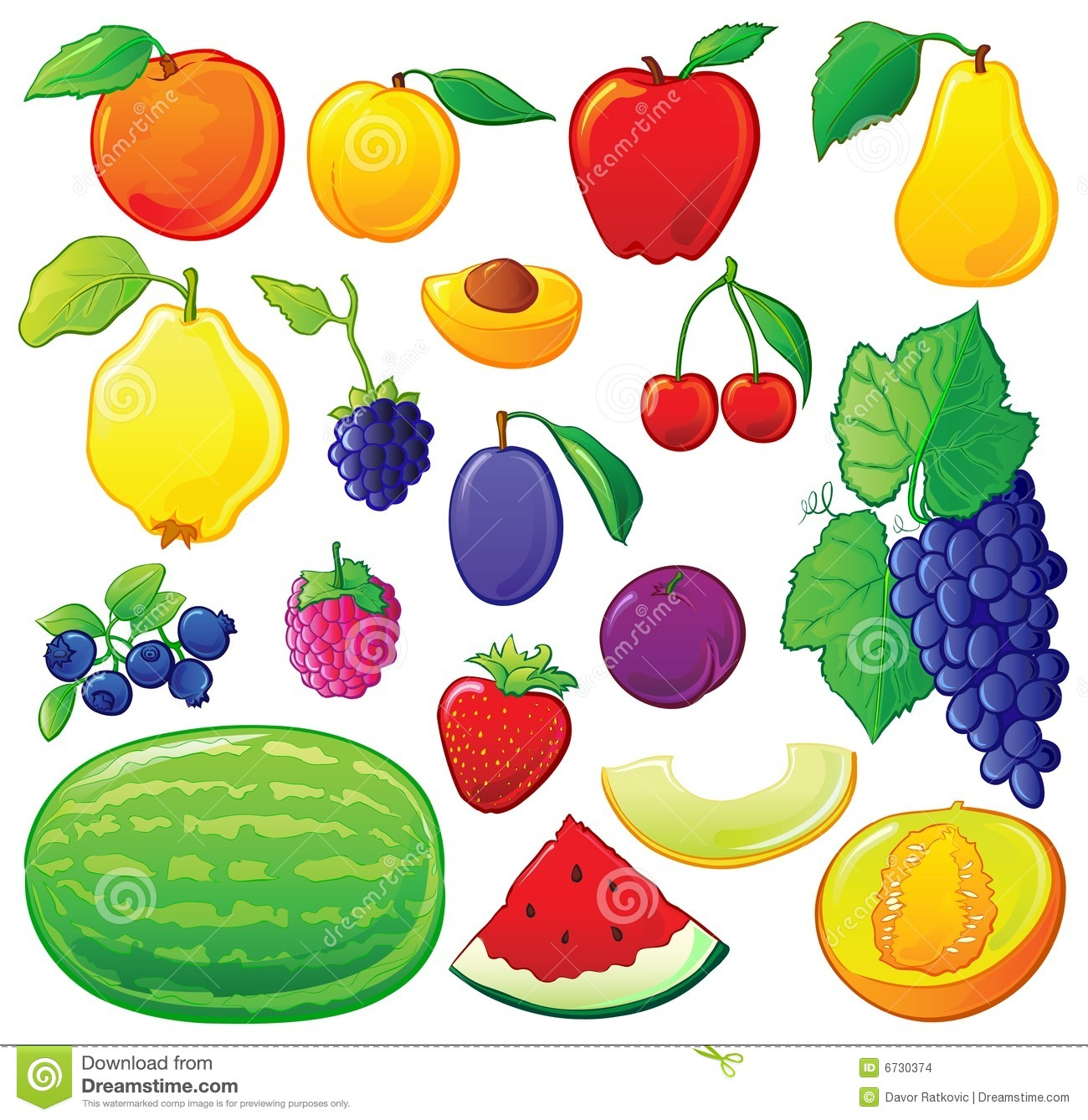 Fruit set, each in separated layer. With color outlines. Vector ...