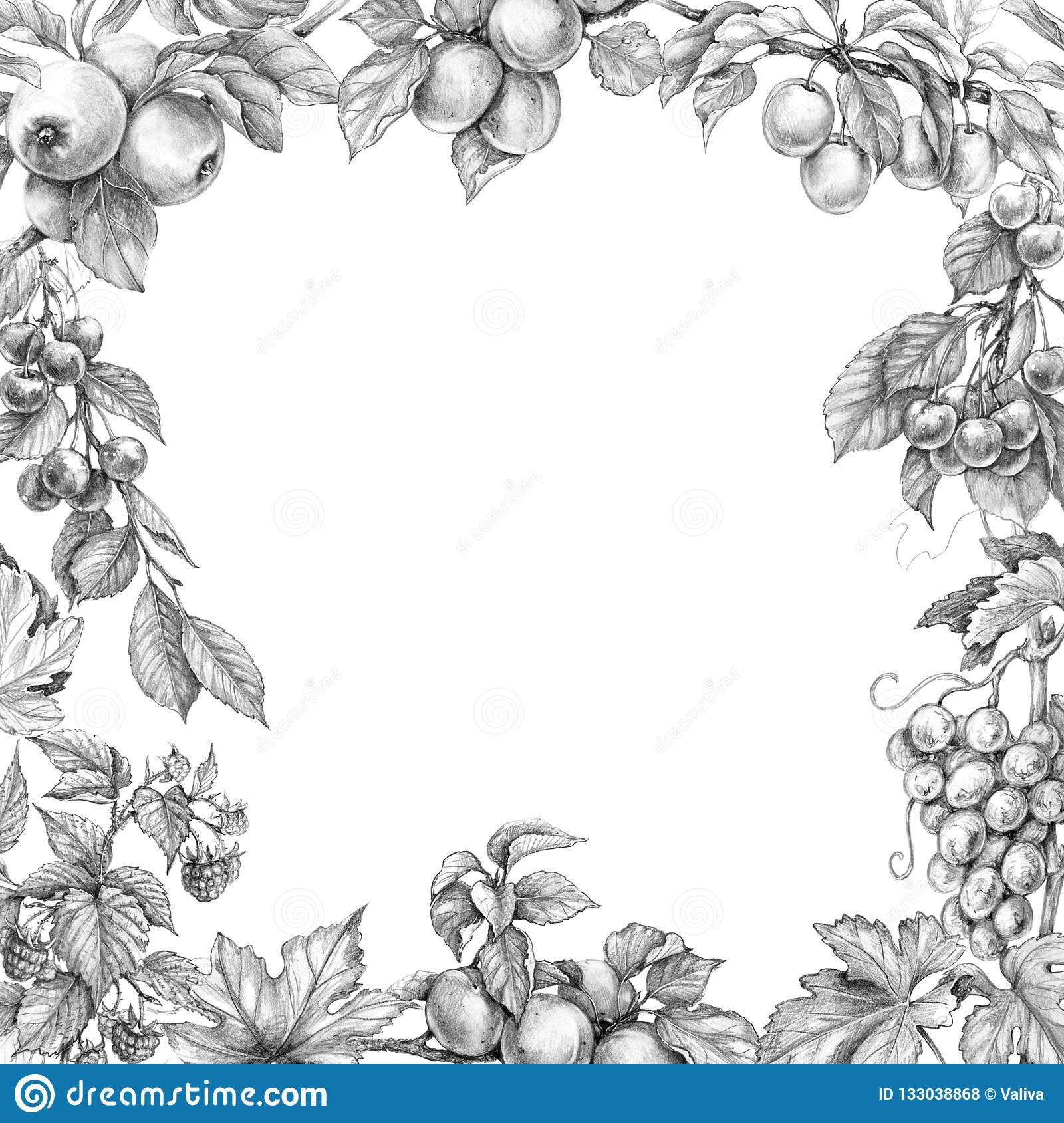 Monochrome border made with sketch of fruits square frame with apple apricot grape plum raspberry cherry and space for text pencil drawing