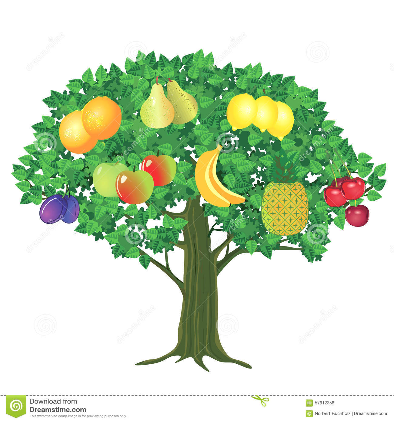 Tree With Fruits Part - 18: Royalty-Free Vector. Download Fruit Tree ...