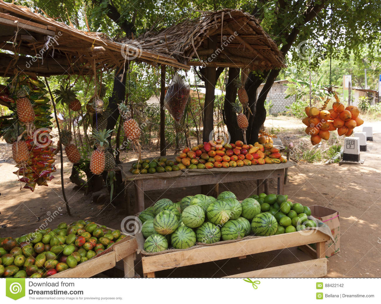 Fruit Vendor`s Stall In Sri Lanka With Coconut,mango And Waterme