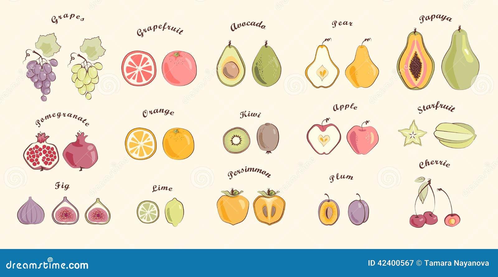 Fruit in warme kleuren wordt geplaatst die