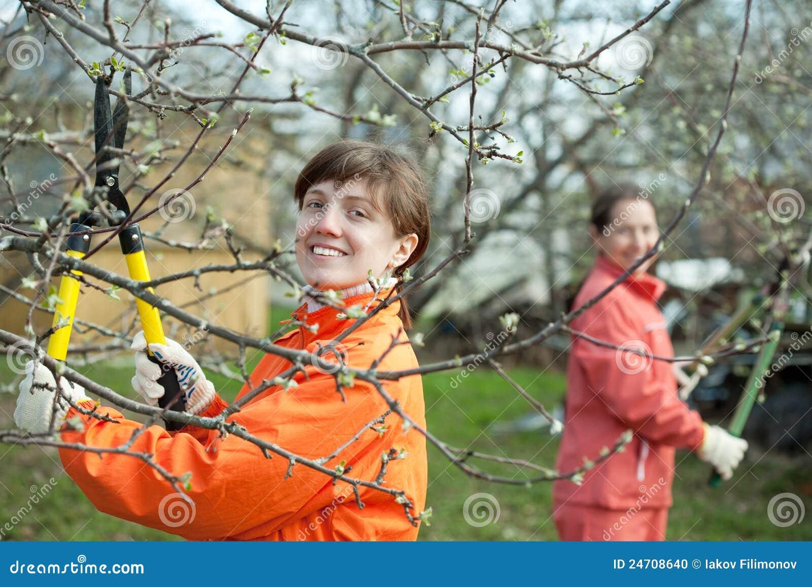 Fruits подрезать женщины вала