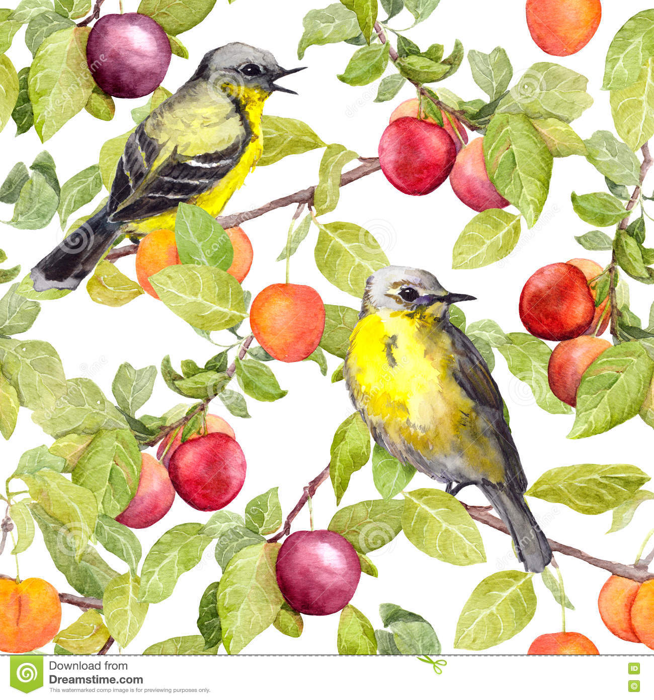Fruits, birds - garden with plum, cherry, apples. Seamless pattern. Watercolor