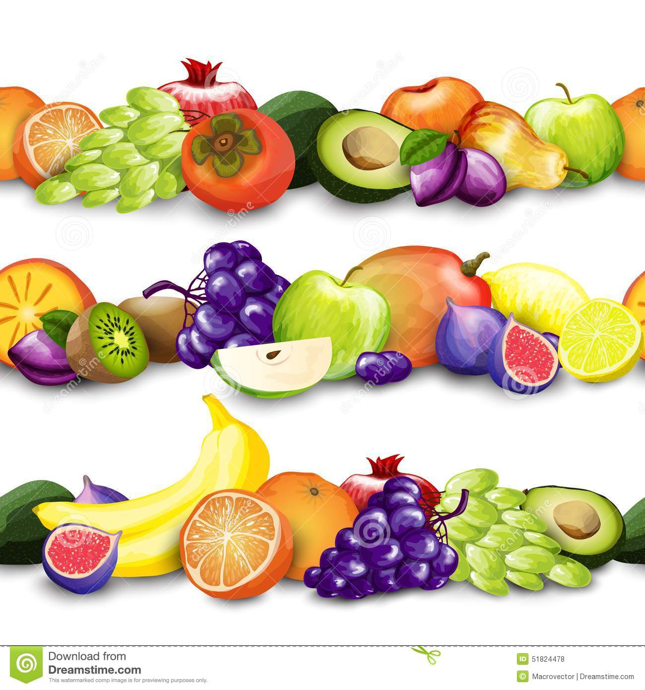 ... exotic fruit decorative borders design template vector illustration