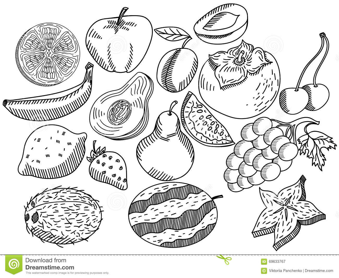 Royalty Free Vector Download Fruits Coloring Book