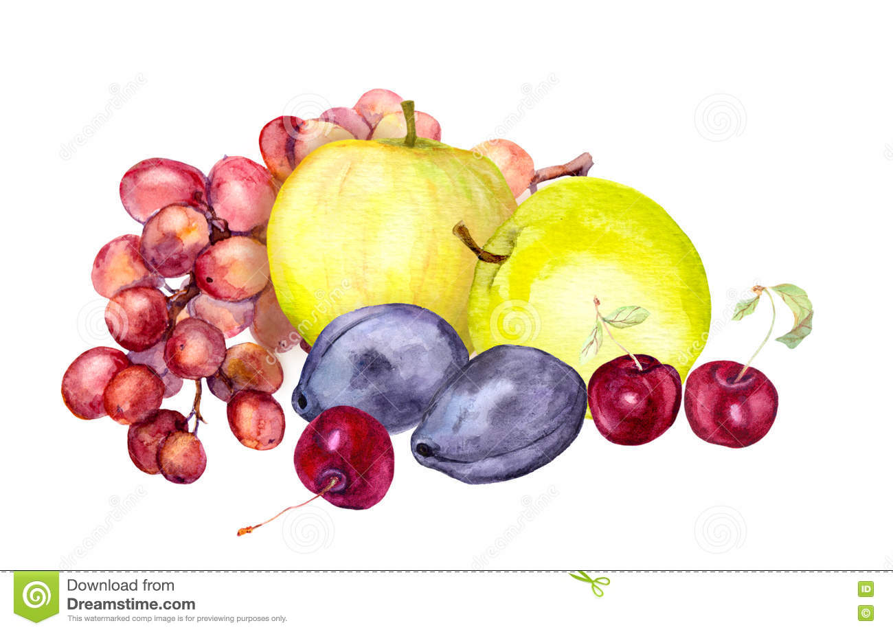 Aquarelle fruit images reverse search - Cerise dessin ...