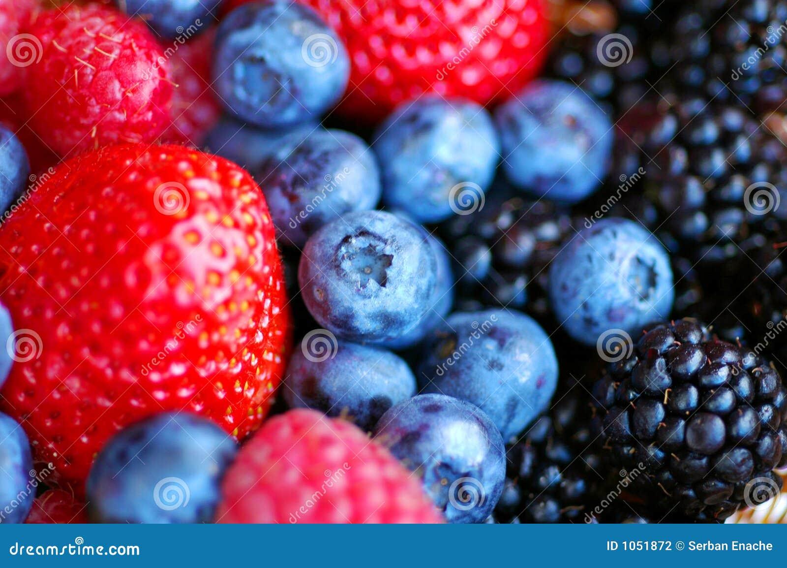 Fruits de forêt - baies