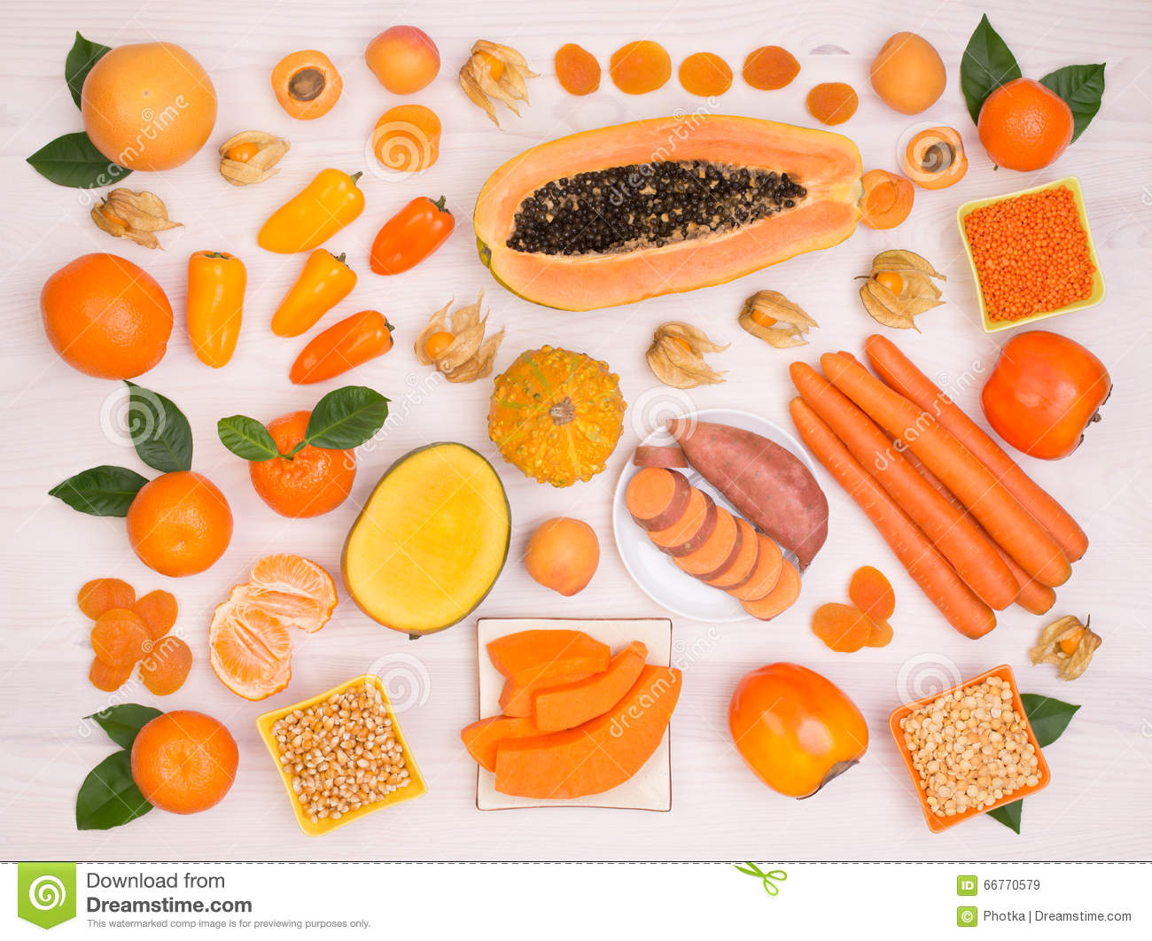 carotenoids coloring pages - photo#48