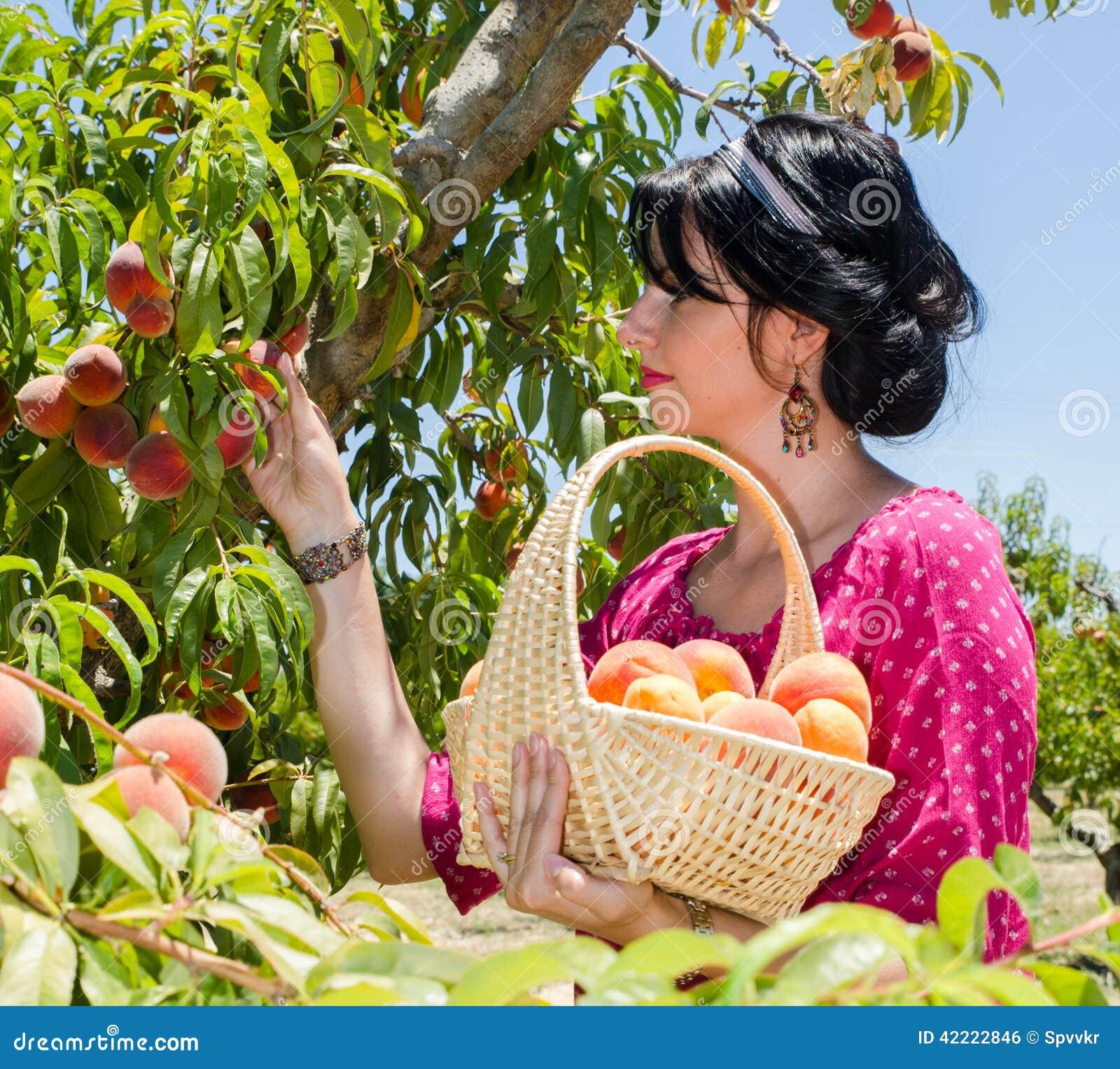 Fruits gais de cueillette de brune