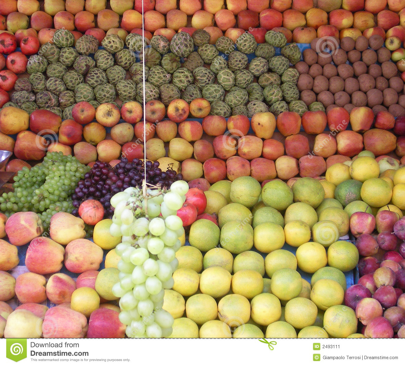 Fruits of Kerala - india stock image  Image of environment - 2493111