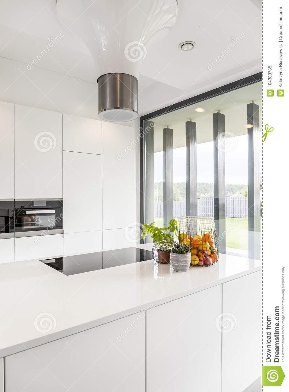 Fruits and plants stock image. Image of oven, natural - 104389735