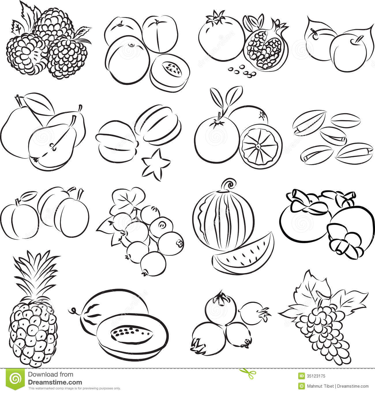 Line Art Fruits : Fruits royalty free stock photo image