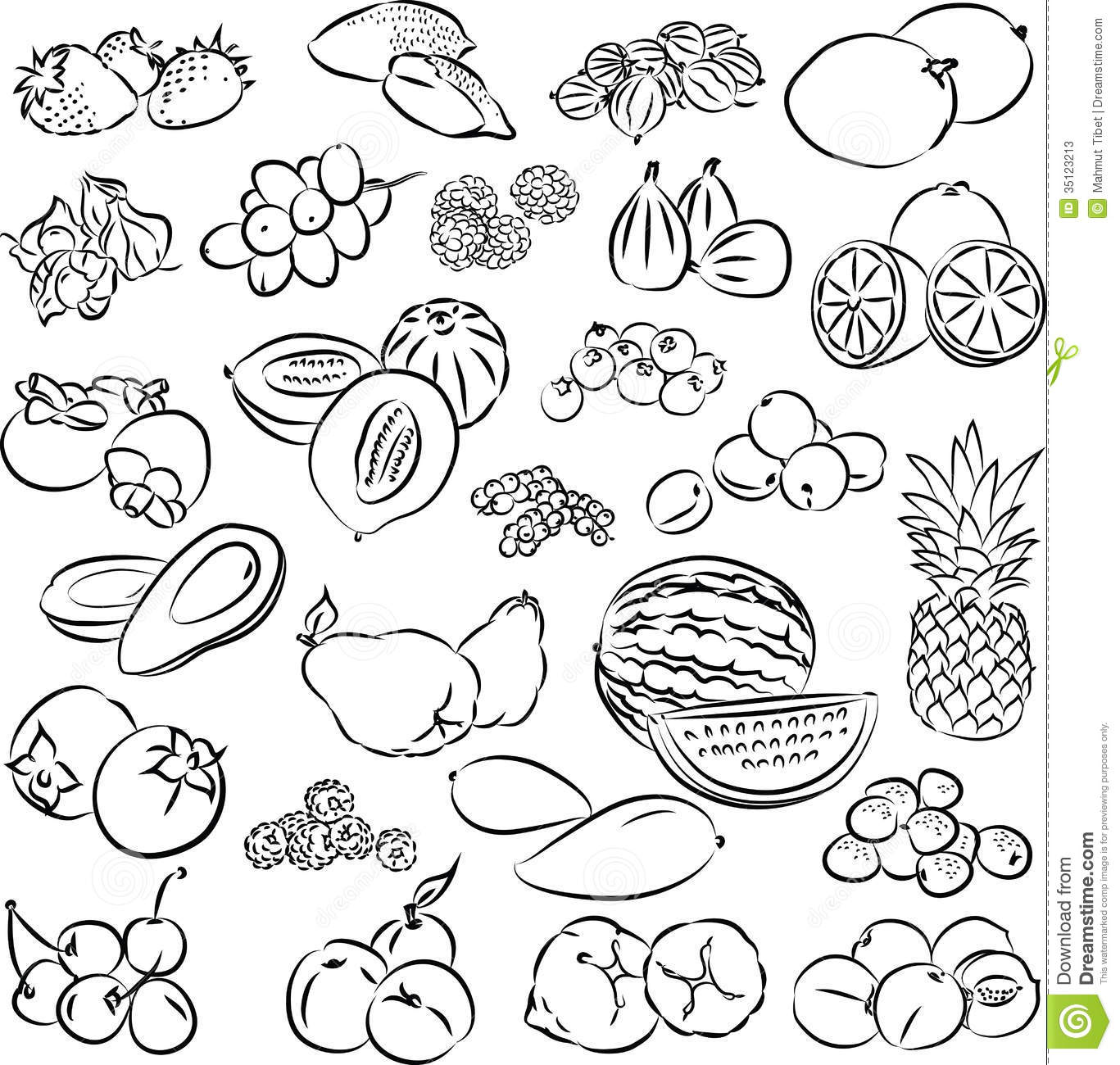 Line Art Fruits : Fruits stock vector illustration of orange pear melon