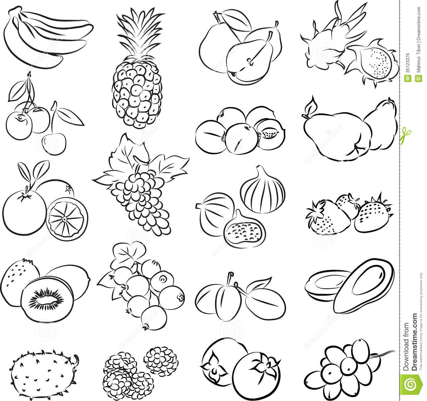 Line Art Vegetables : Fruits royalty free stock image