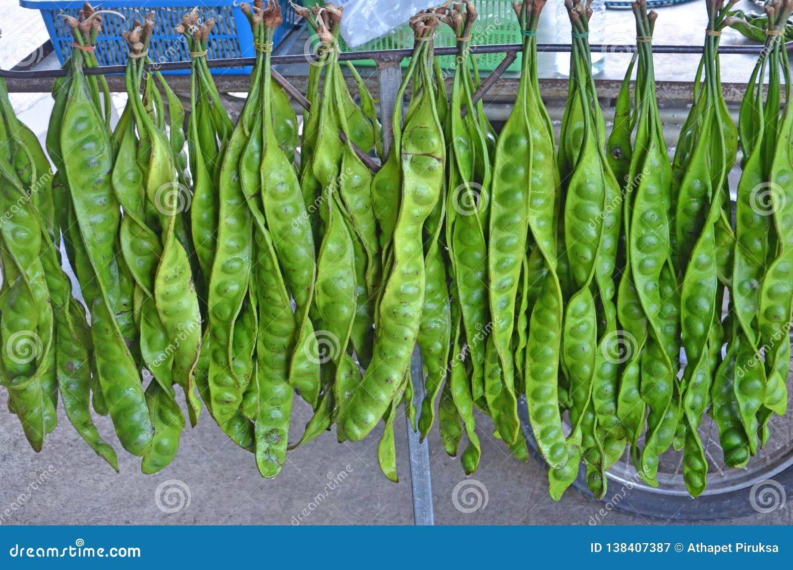 Fruits verts accrochants avec des rangées de vente de graine pour la nourriture