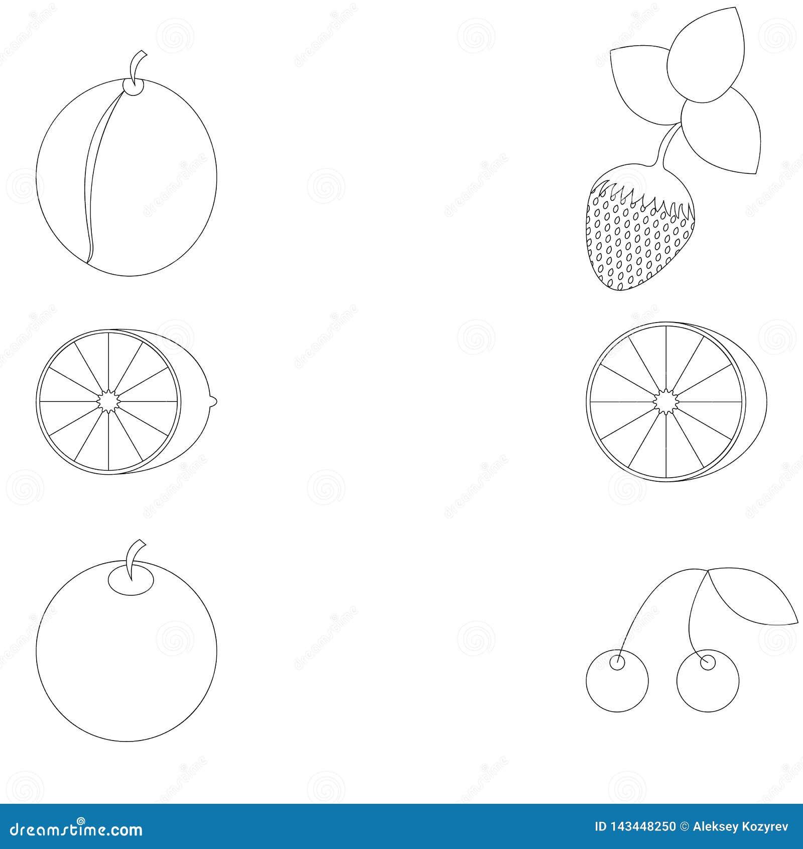 Frukt som är planimetric under en färgläggning
