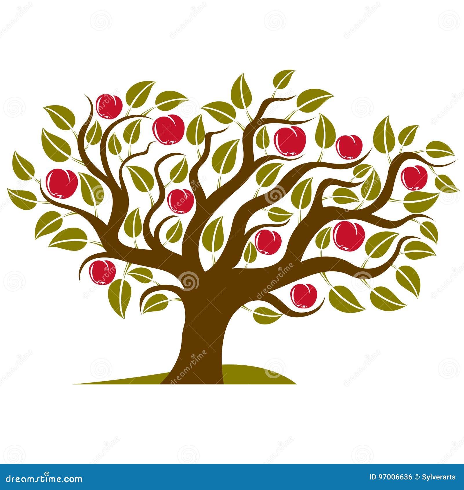 Frukt- träd med mogna äpplen som isoleras på vit Organiskt och eco