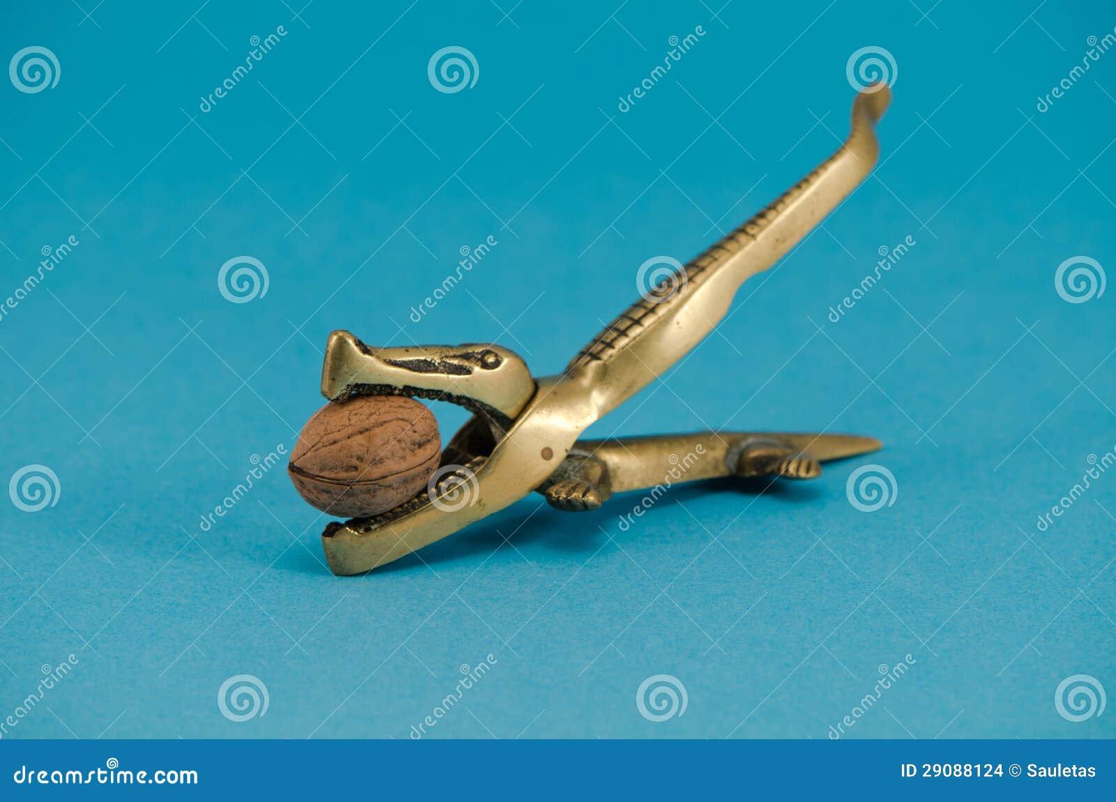 Fruktdryck för muttern för den guld- krokodilvalnöten bearbetar grekisk blått