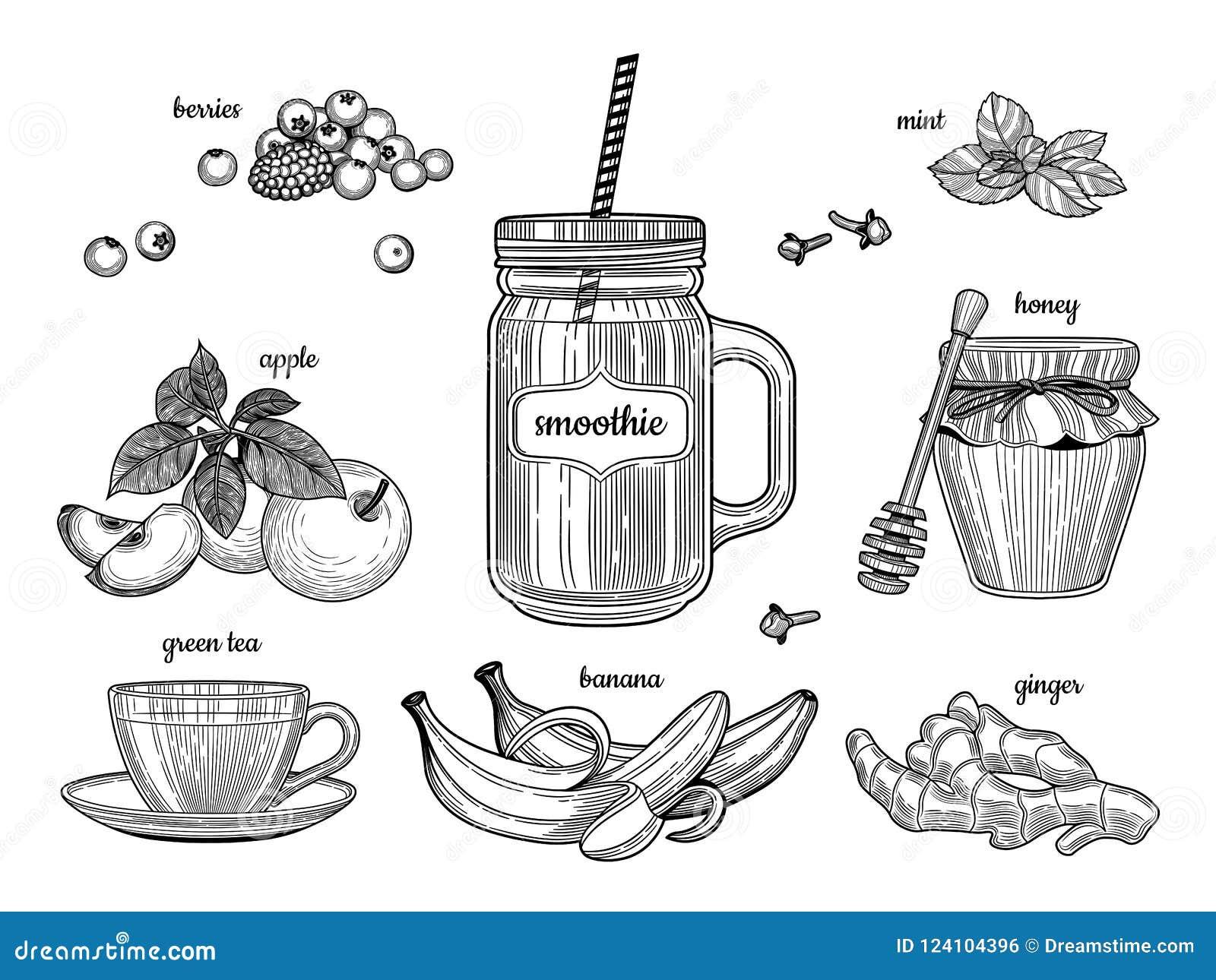 Frullato in un barattolo di vetro Gli ingredienti individuali Bacche, mela, tè verde, banana, zenzero, miele, menta